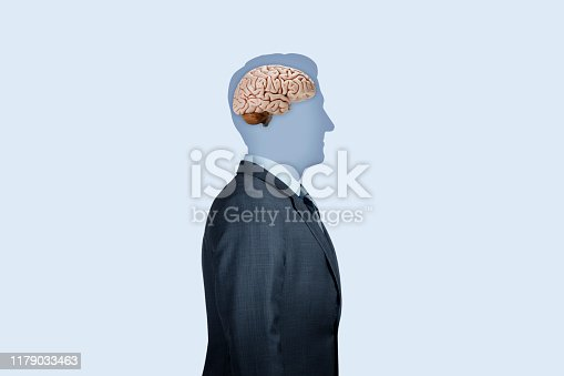 A man's identity is reduced to a silhouette and devoid of any detail as he stands at a profile to the camera against a light blue background.  A human brain occupies its rightful place in the man's head.  The image conveys the concept of intelligence, be it natural or artificial.