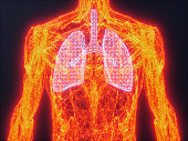 istock Human Lungs Made Of Triangle Shape 1200722670