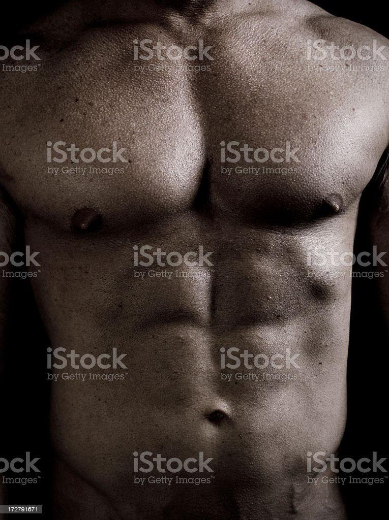 Human Male Torso royalty-free stock photo