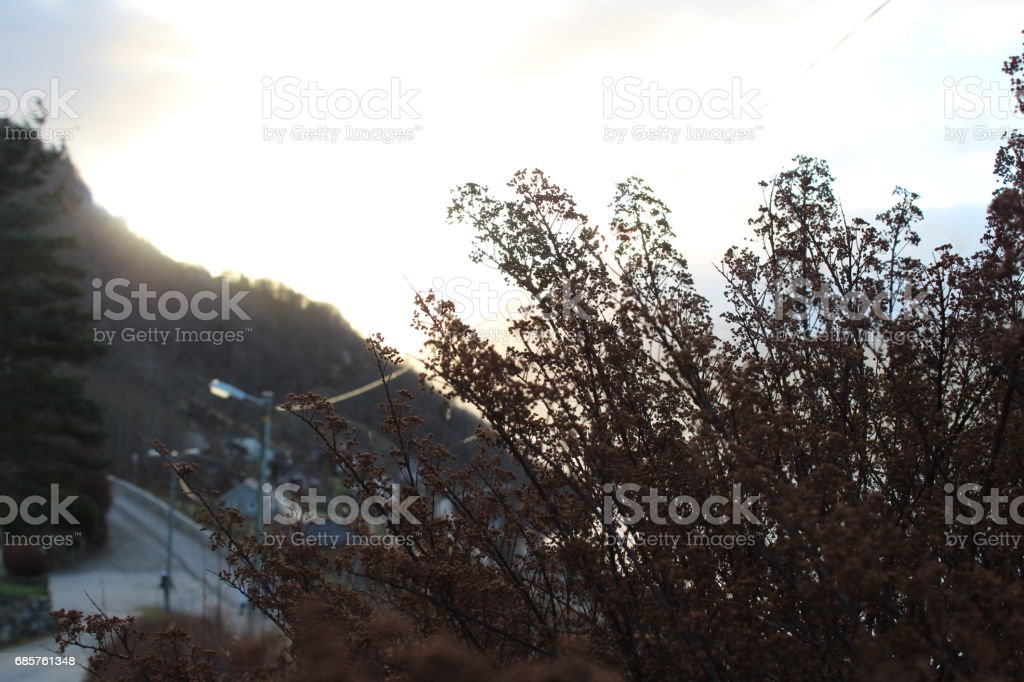 Human nature royalty free stockfoto