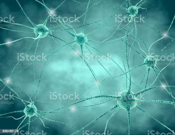 Human nervous system nerve cells with synapses and neurotransmitters picture id836488174?b=1&k=6&m=836488174&s=612x612&h= cny568qyjloj hxqlmtifvrmrzz3rao2d62gpbhjmu=