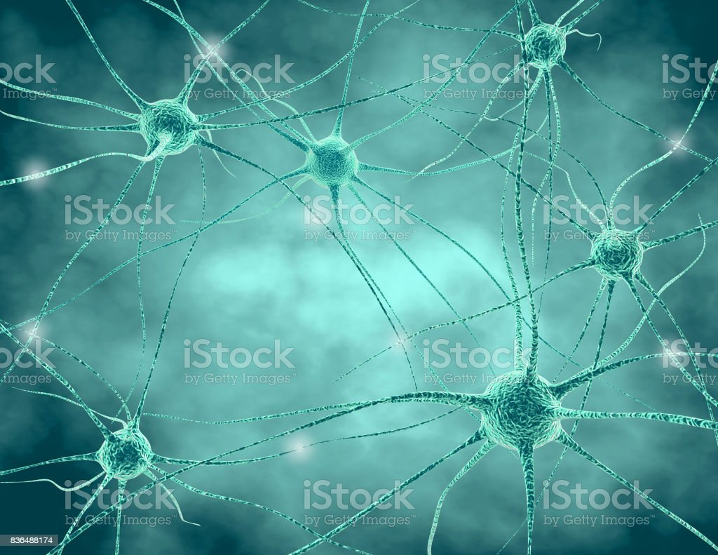 Human nervous system . Nerve cells with synapses and neurotransmitters 3D illustration. stock photo