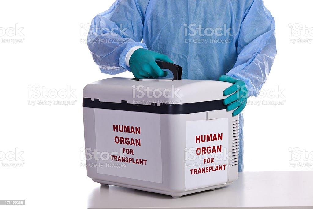Umani per il trapianto d'organo - foto stock