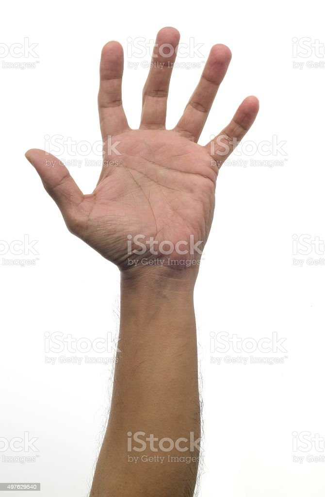 Human Palm over white background stock photo