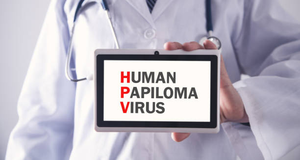 Human Papiloma Virus. HPV Human Papiloma Virus. HPV human papilloma virus stock pictures, royalty-free photos & images