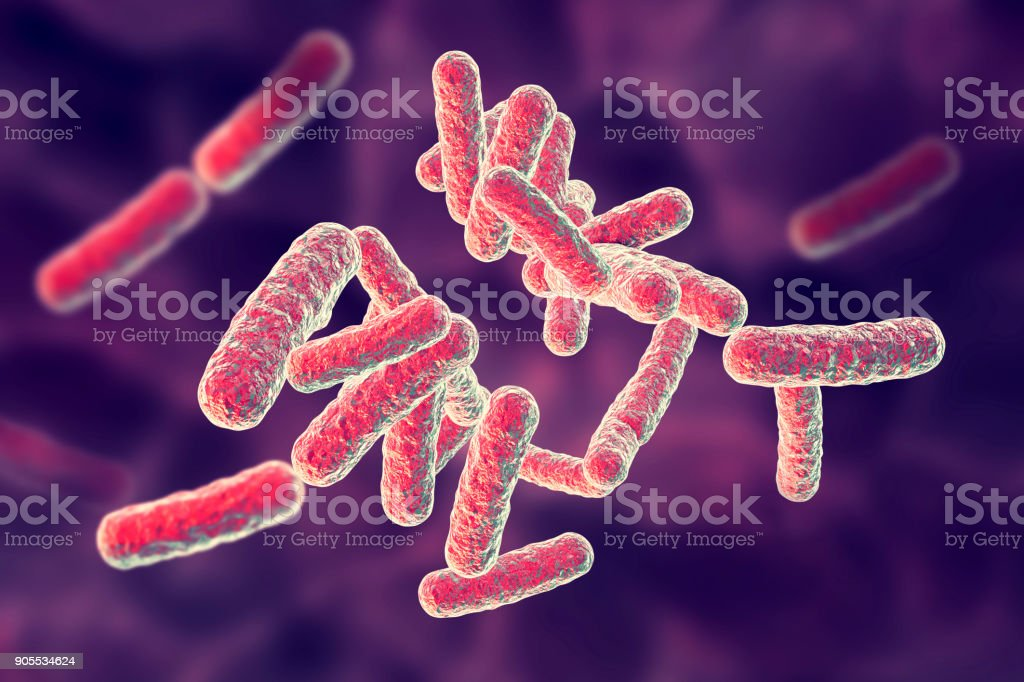 Human pathogenic bacteria stock photo