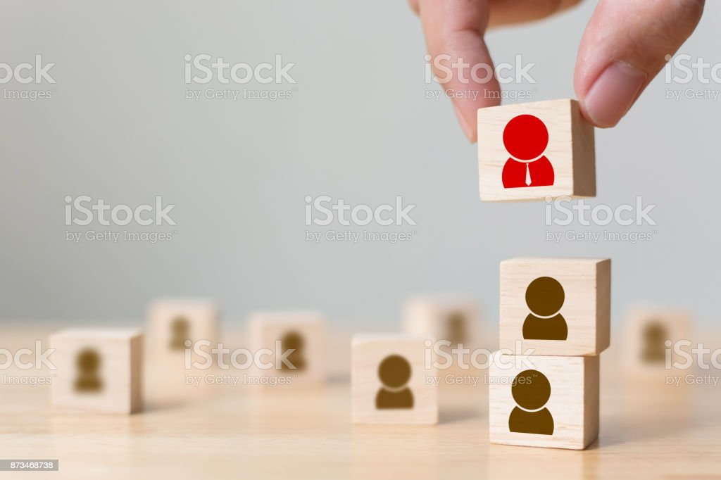 Human resource management and recruitment business build team concept, Hand putting wood cube block on top, Copy space stock photo