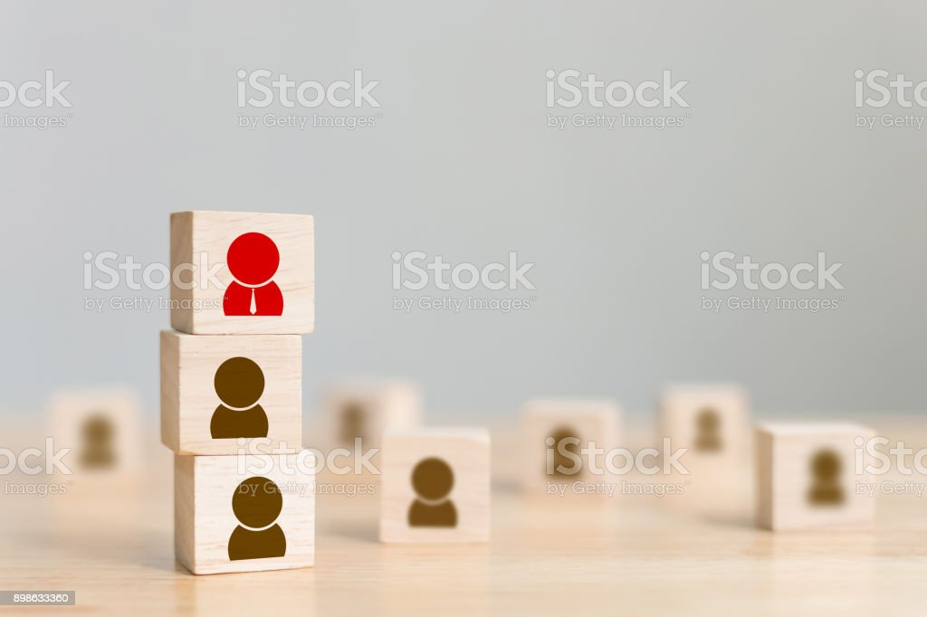 Human resource management and recruitment business build team concept, Copy space stock photo