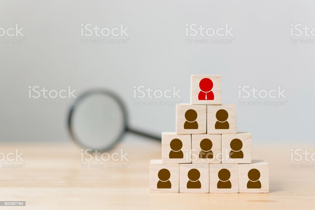 Human resource management and recruitment business concept, Copy space stock photo