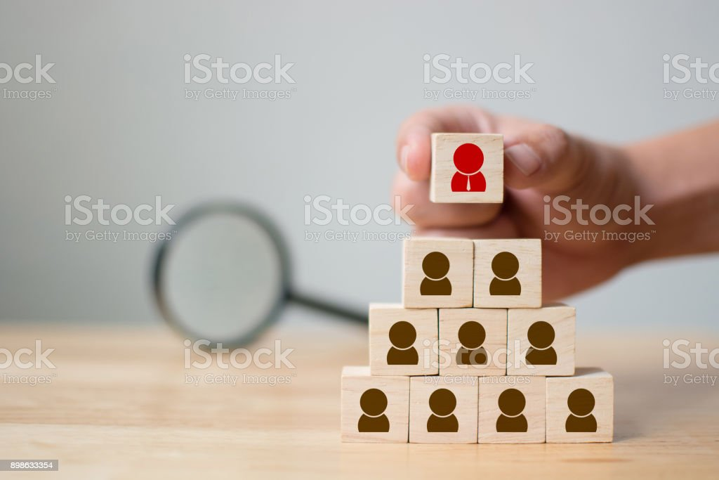 Human resource management and recruitment business concept, Hand putting wood cube block on top pyramid and magnifying glass, Copy space stock photo