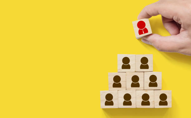 Human resource management and recruitment business concept, Hand putting wood cube block on top pyramid, Copy space Human resource management and recruitment business concept, Hand putting wood cube block on top pyramid, Copy space military recruit stock pictures, royalty-free photos & images