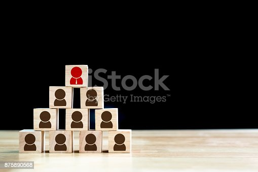 641422198istockphoto Human resource management and recruitment business concept, Wood cube building 875890568