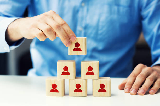 human resources and business hierarchy concept stock photo