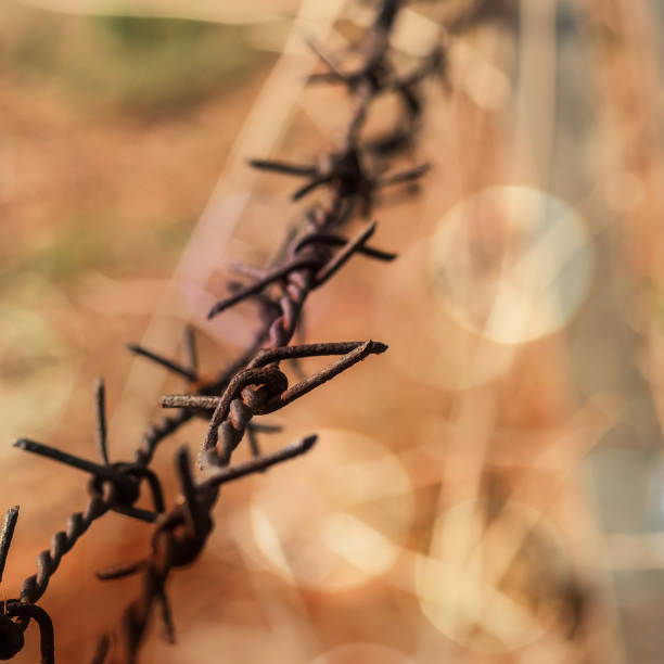 Human rights and social justice abstract concept with blurry barbed wire rod fence, candle light lit yellow gold bokeh Human rights and social justice abstract concept with blurry barbed wire rod fence, candle light lit yellow gold bokeh genocide stock pictures, royalty-free photos & images