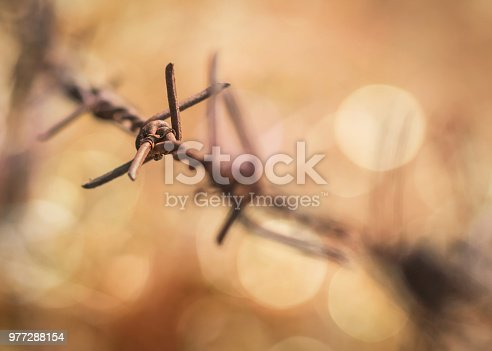 Human rights and social justice abstract concept with blurry barbed wire rod fence, candle light lit yellow gold bokeh
