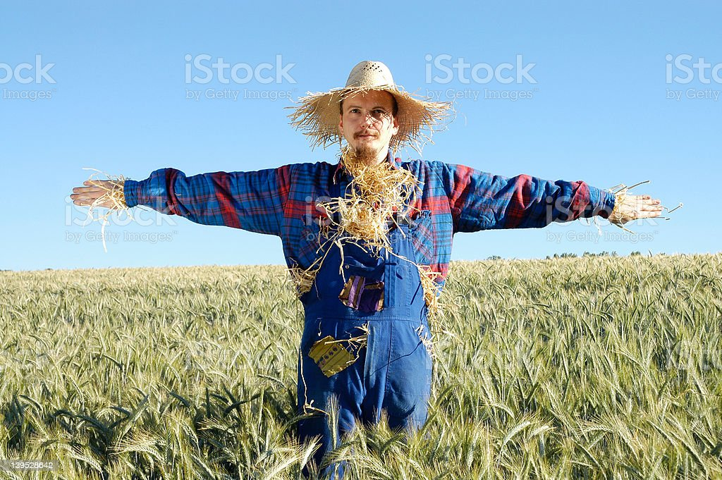 human scarecrow IX stock photo