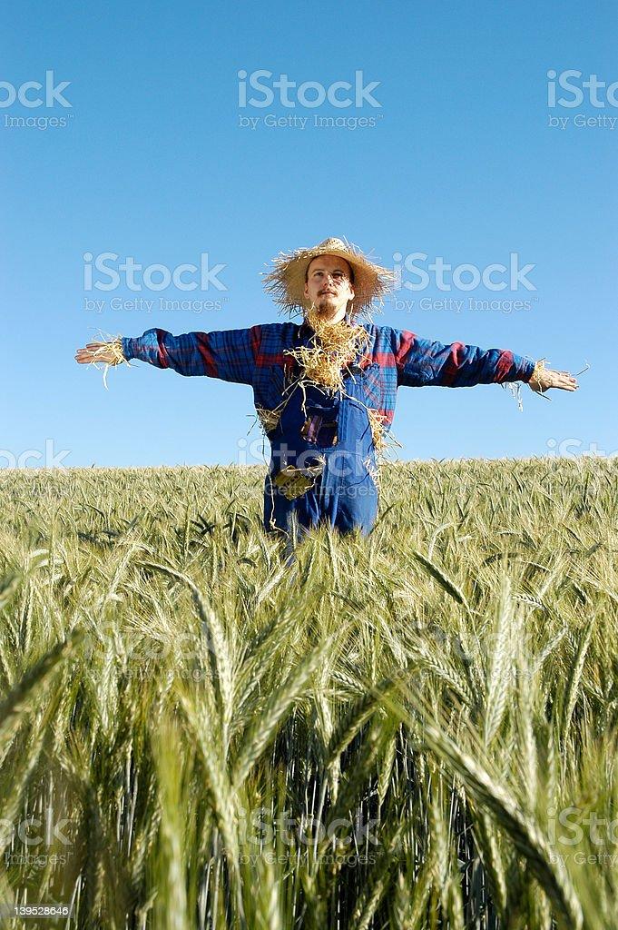 human scarecrow  X stock photo