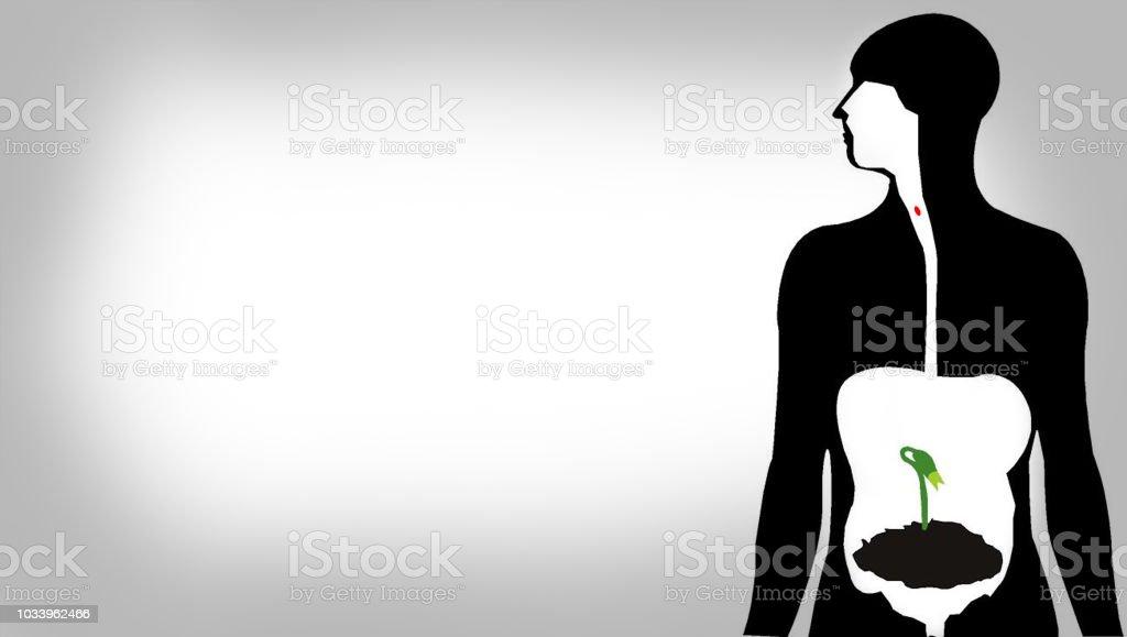 menschliche Silhouette Wiedergeburt Gesundes Leben – Foto