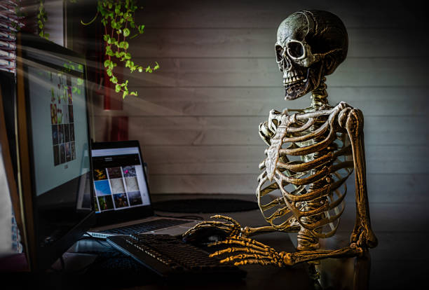 Human skeleton at office stock photo