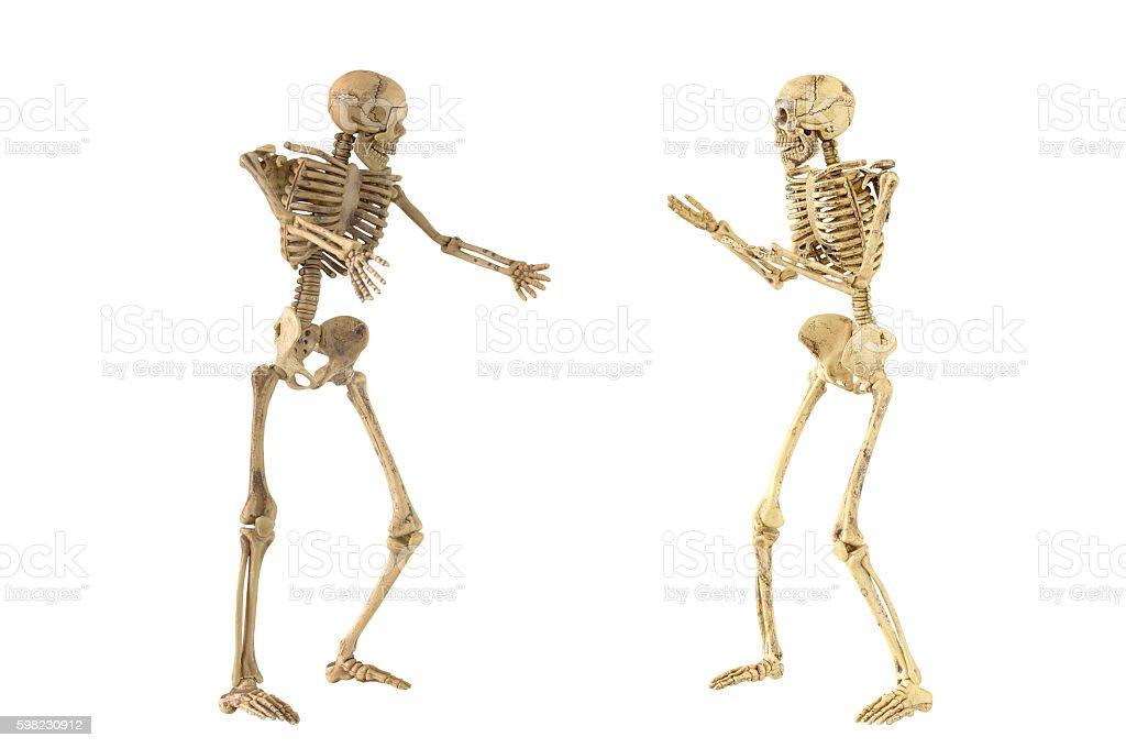 Human skeleton bone standing action foto royalty-free