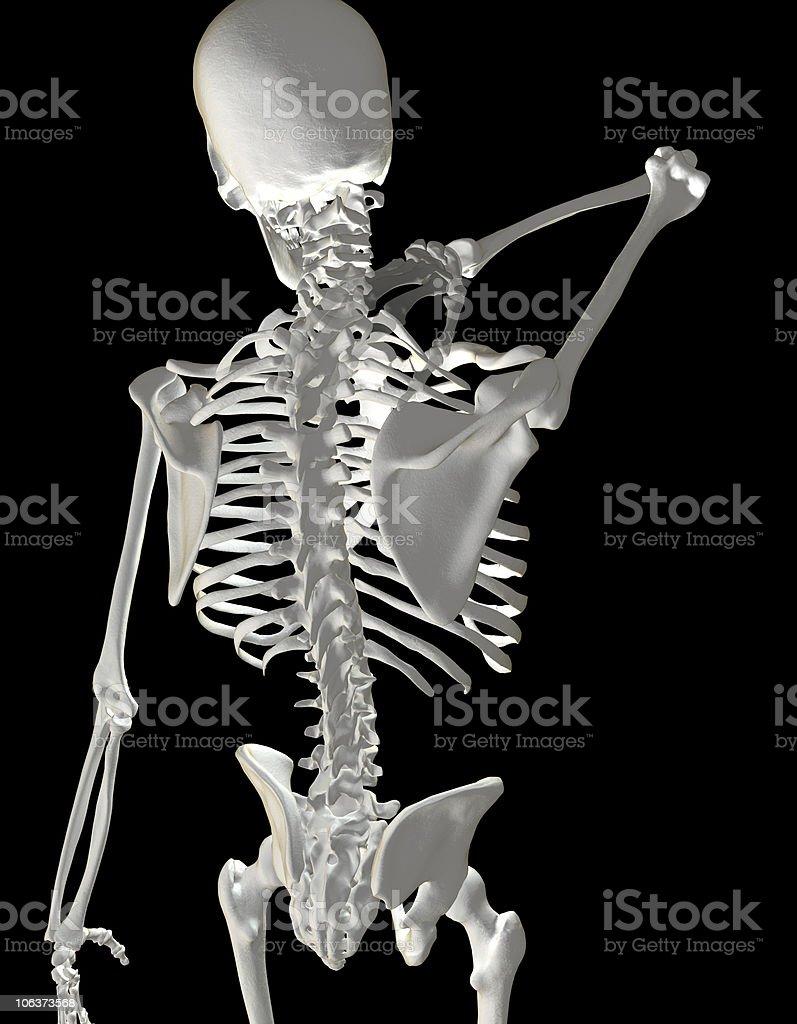 Fotografía de Esqueleto Humano Mostrando Dolor De Cuello y más banco ...