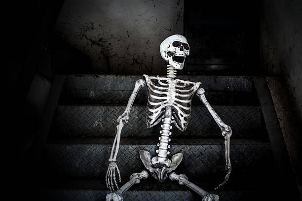 human skeleton sitting on the stairs and laughing - zum totlachen stock-fotos und bilder