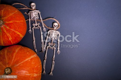 istock Human skeletons on a rope on a dark background. The day of the Dead. 1178553232