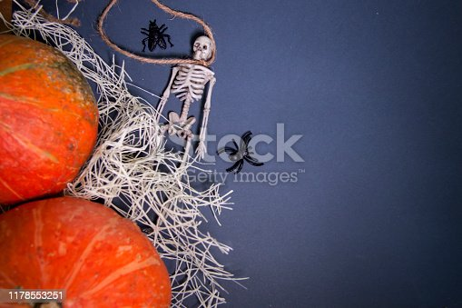 istock Human skeletons on a rope on a dark background. The day of the Dead. 1178553251