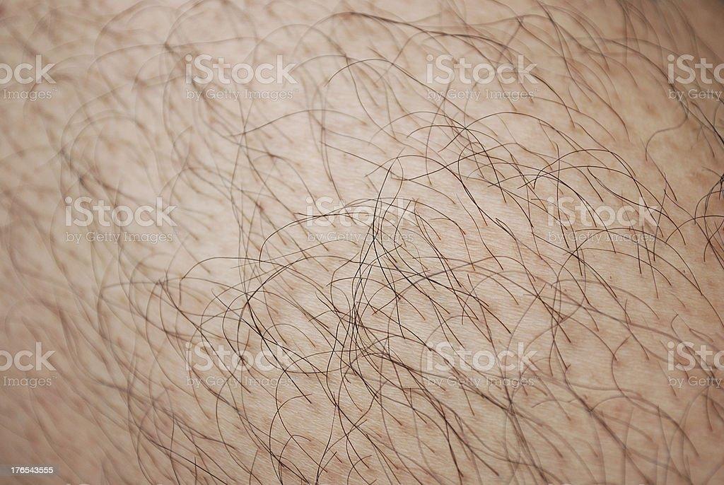 Human skin and hairs stock photo