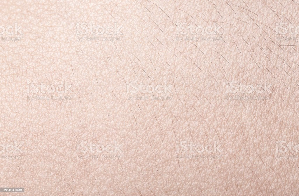 Human skin close up royalty-free stock photo