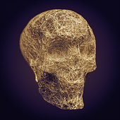 Abstract human skull made with fibers and water.