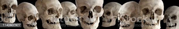 Human skull at different angles on a black background the header or picture id1140602927?b=1&k=6&m=1140602927&s=612x612&h=s5r9fjjvbai5plhg7phxaibnie4vecehcnja8 zekvc=