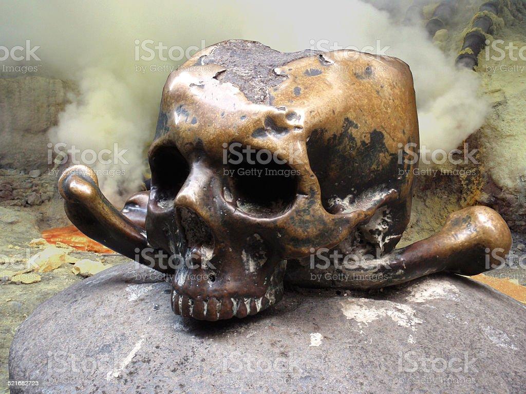 human skull closeup stock photo