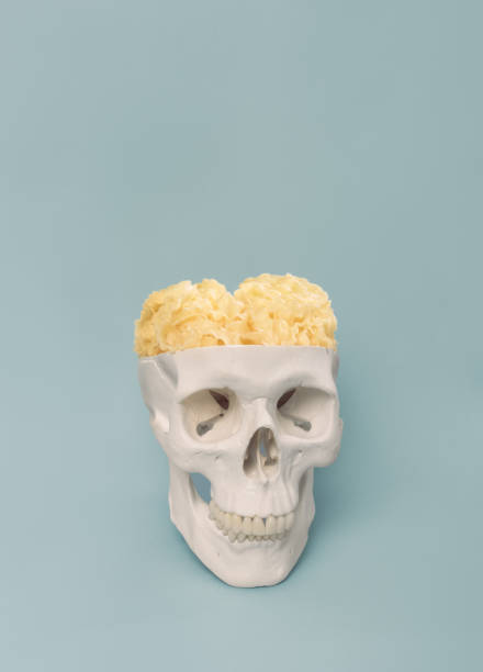 human skull fillled with brain made of pasta - muscolo mentale foto e immagini stock