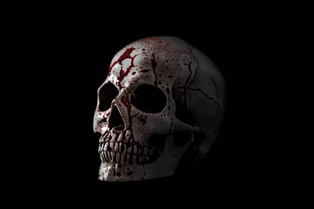 Human skull in blood isolated on black background with clipping path stock photo