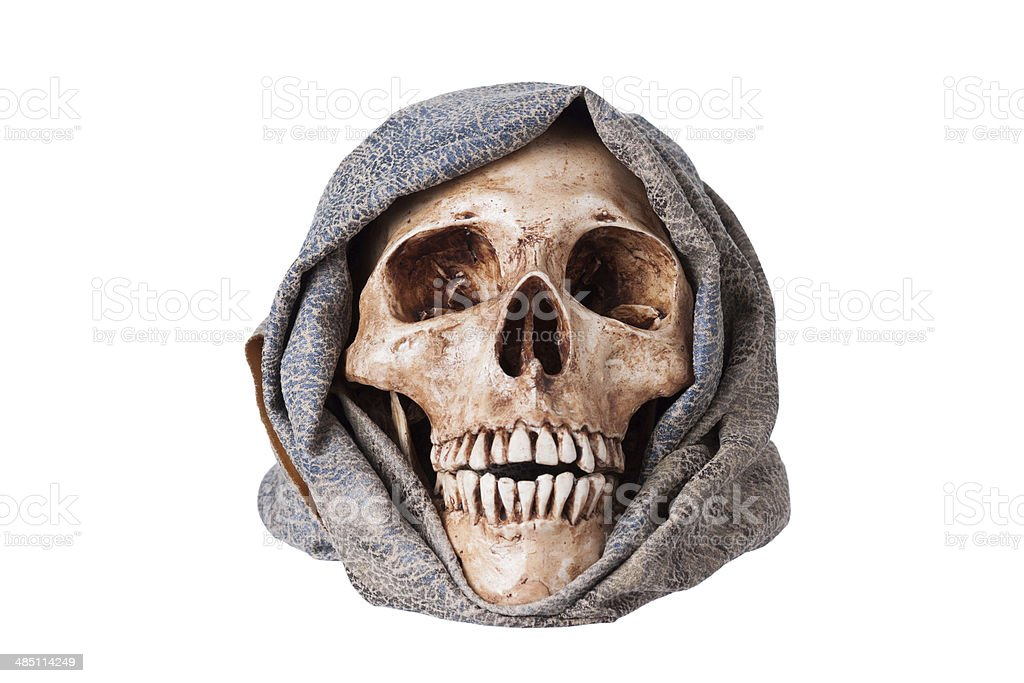 Human skull, Isolated on a white background. stock photo