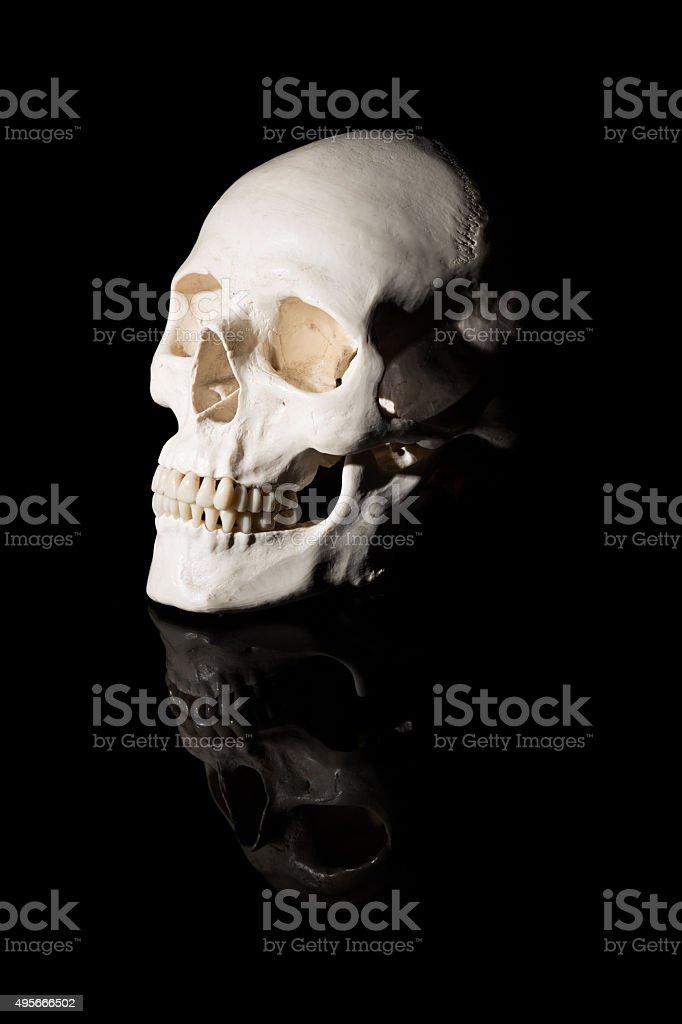 Human skull on black background stock photo