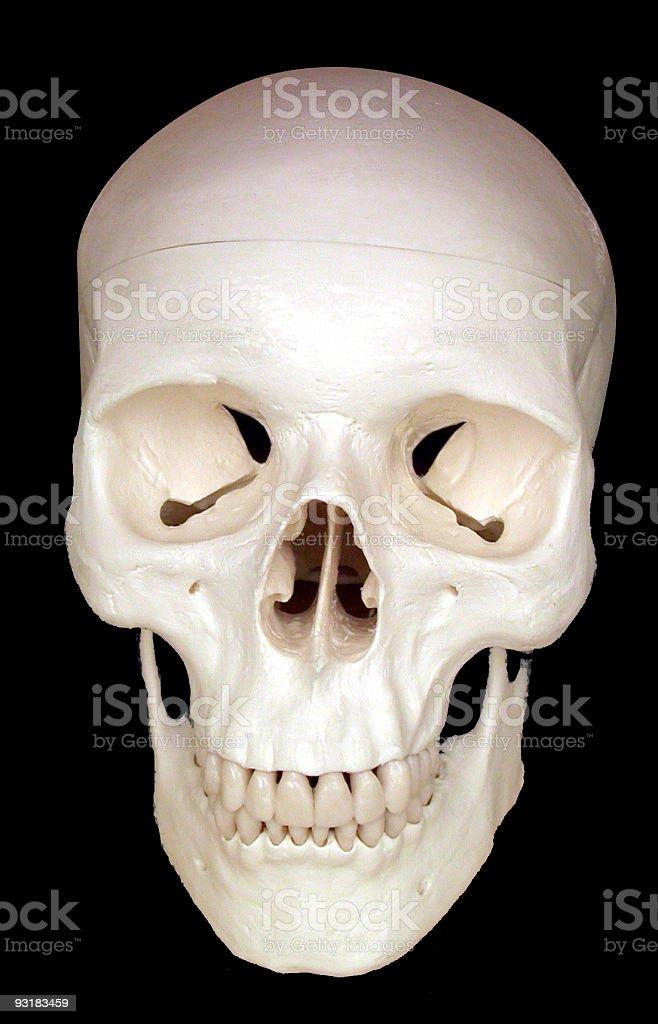 Human skull on black royalty-free stock photo