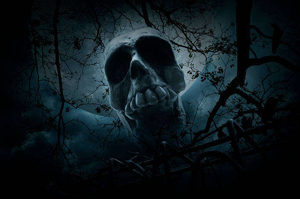 human skull over dead tree and moon, halloween concept - croak stock pictures, royalty-free photos & images