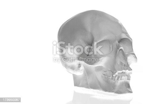istock Human skull 173950087