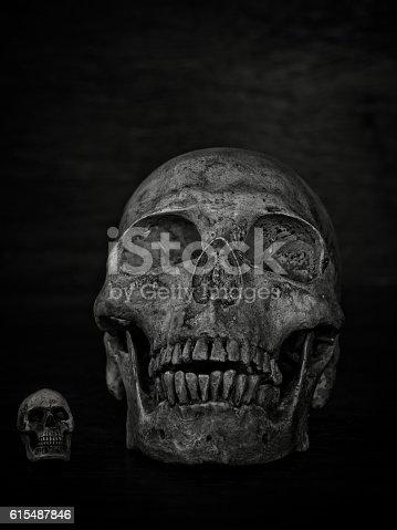 istock Human skull 615487846