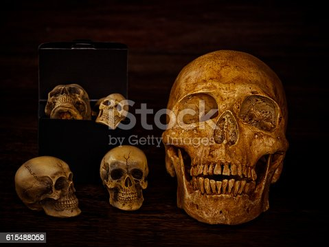istock Human skull 615488058