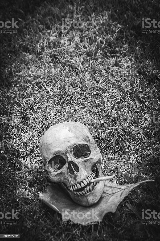 Human skull smoking the cigarette - Photo