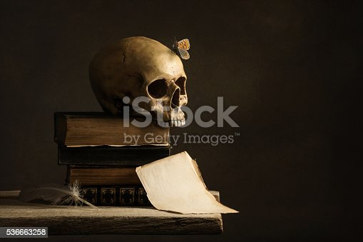 istock human Skull with Butterfly and a empty Page with Feather 536663258