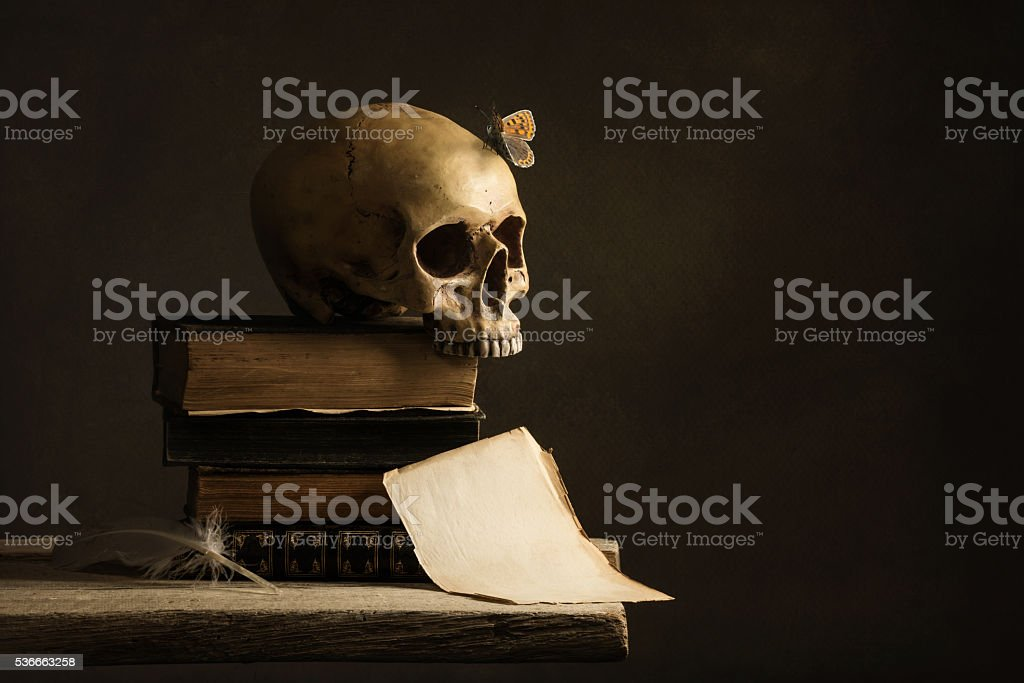 human Skull with Butterfly and a empty Page with Feather stock photo