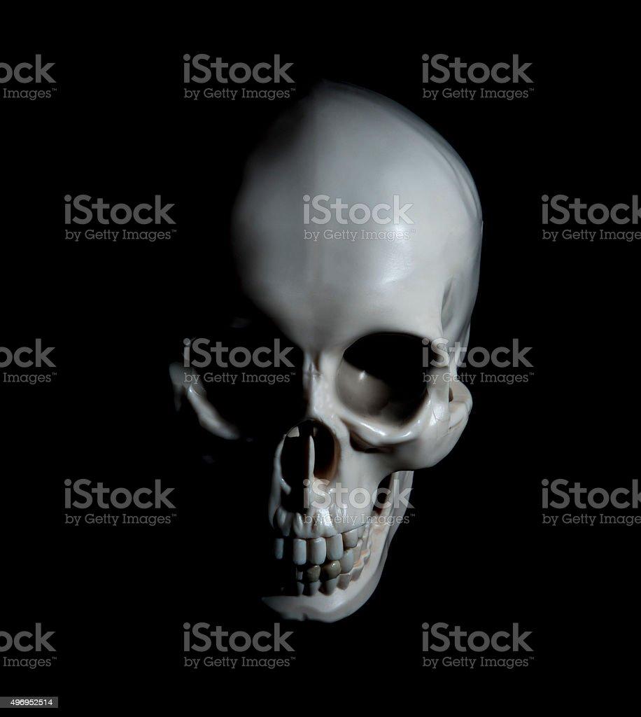 Human skull with dramatic lightning stock photo