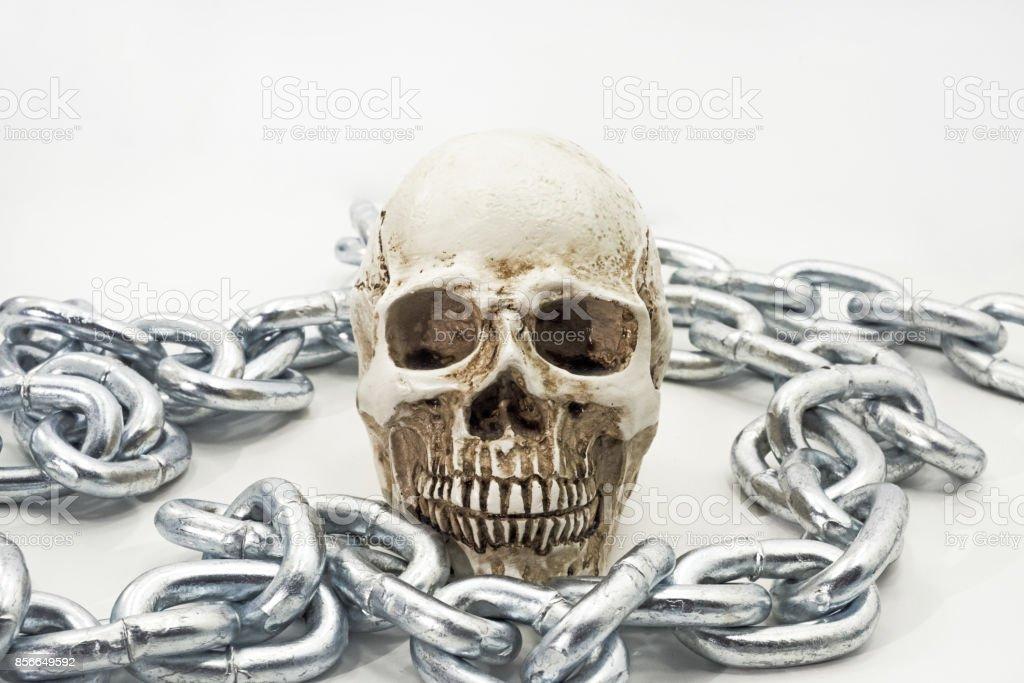 Human skull with iron chain. stock photo