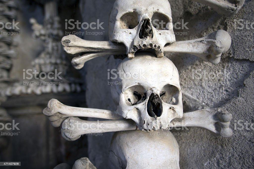 Menschliche Skuls Nahaufnahme – Foto