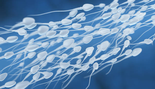 human sperm flow - sperm stock pictures, royalty-free photos & images