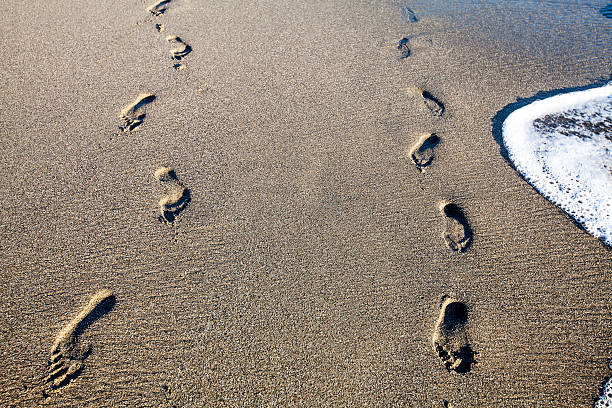 Human steps of two people on the beach sand stock photo